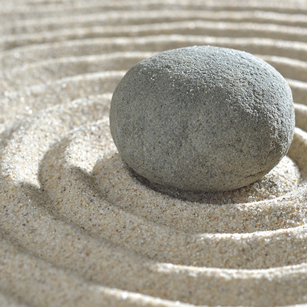 DIY zen garden for teens - Ashfield Library