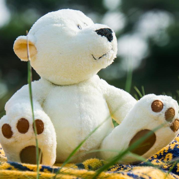 Storytime & Craft Teddy Bears Picnic 4-7 years @ The Connection Rhodes